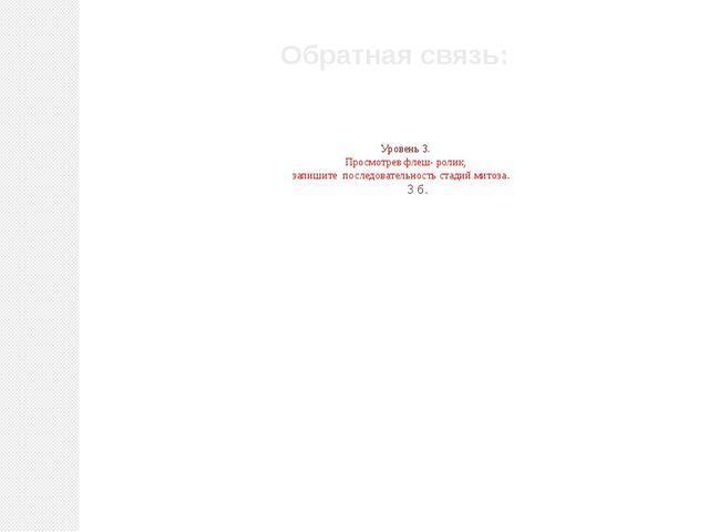 Уровень 3. Просмотрев флеш- ролик, запишите последовательность стадий митоза...