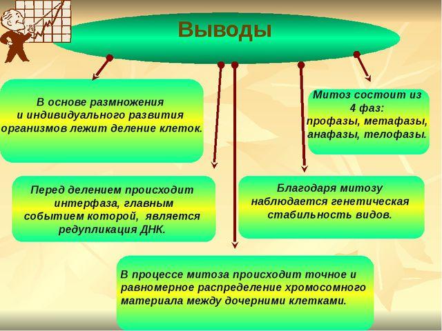 В основе размножения и индивидуального развития организмов лежит деление кле...