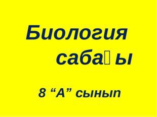 """Биология сабағы 8 """"А"""" сынып"""