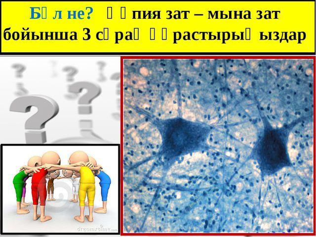 : Бұл не? Құпия зат – мына зат бойынша 3 сұрақ құрастырыңыздар