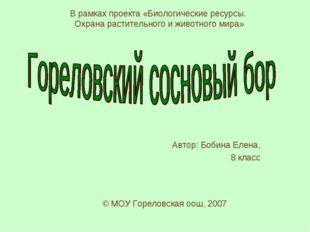 Автор: Бобина Елена, 8 класс © МОУ Гореловская оош, 2007 В рамках проекта «Би