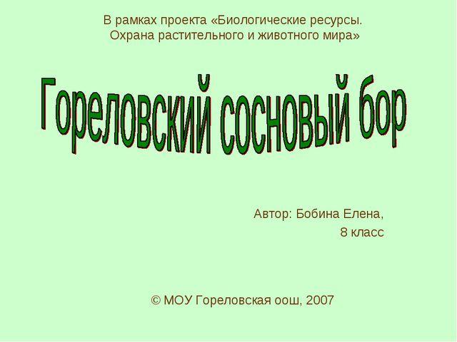Автор: Бобина Елена, 8 класс © МОУ Гореловская оош, 2007 В рамках проекта «Би...
