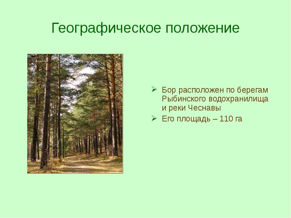 Географическое положение Бор расположен по берегам Рыбинского водохранилища и...