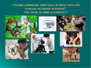 - Почему домашние животные не могут жить без помощи человека человека? -Как л
