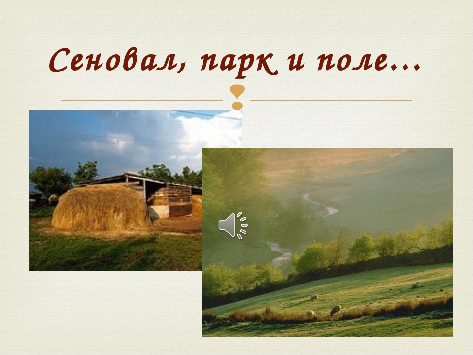 Сеновал, парк и поле… 