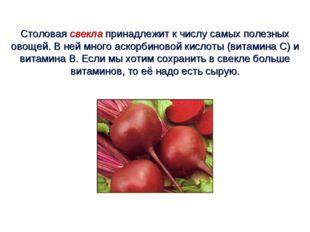 Столовая свекла принадлежит к числу самых полезных овощей. В ней много аскорб