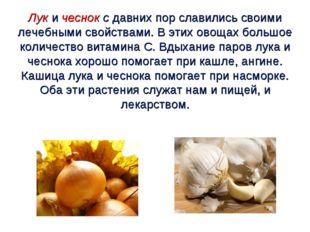 Лук и чеснок с давних пор славились своими лечебными свойствами. В этих овоща