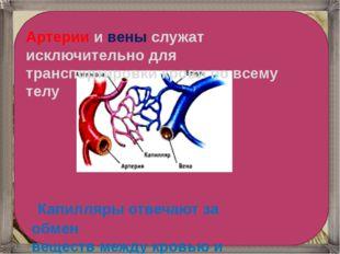 Капилляры отвечают за обмен веществ между кровью и телом. Артерии и вены слу