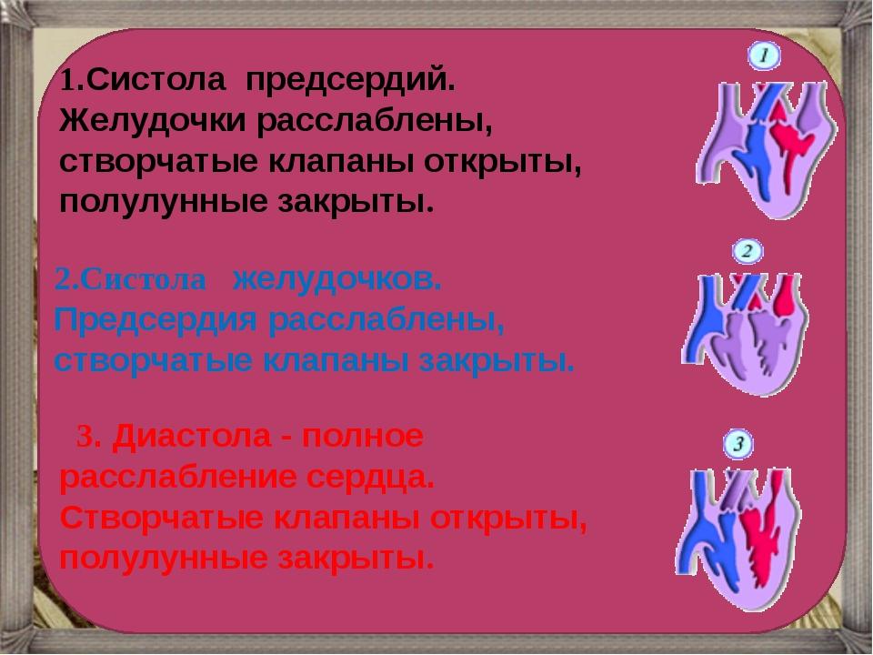 1.Систола предсердий. Желудочки расслаблены, створчатые клапаны открыты, пол...