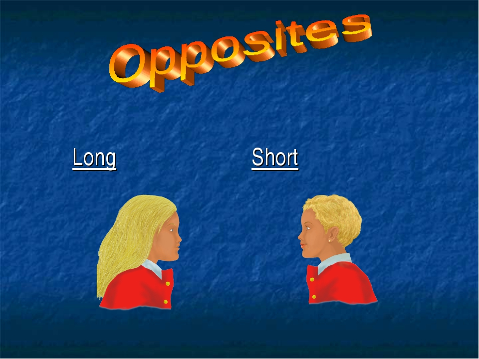 Long Short