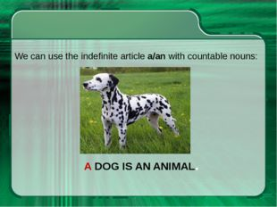 A DOG IS AN ANIMAL. We can use the indefinite article a/an with countable nou