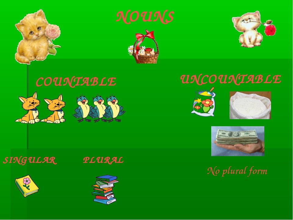 NOUNS COUNTABLE UNCOUNTABLE SINGULAR PLURAL No plural form