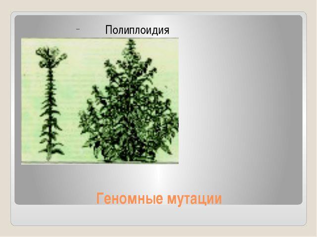 Геномные мутации Полиплоидия