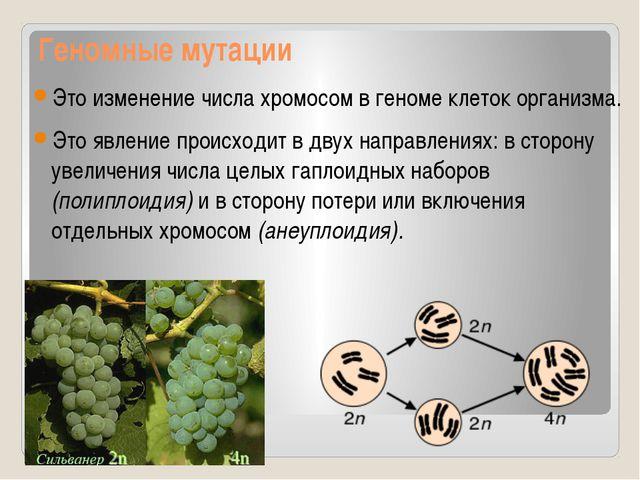 Геномные мутации Это изменение числа хромосом в геноме клеток организма. Это...