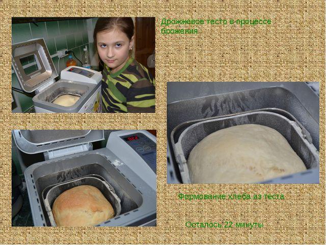 Осталось 22 минуты Формование хлеба из теста Дрожжевое тесто в процессе броже...