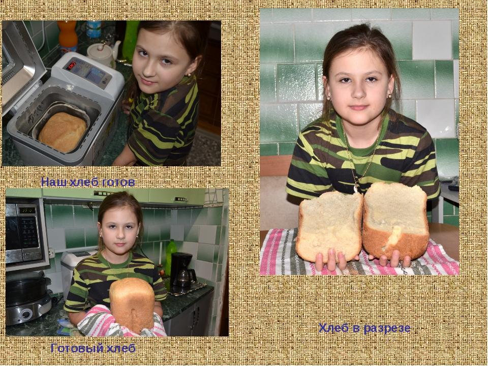 Хлеб в разрезе Готовый хлеб Наш хлеб готов