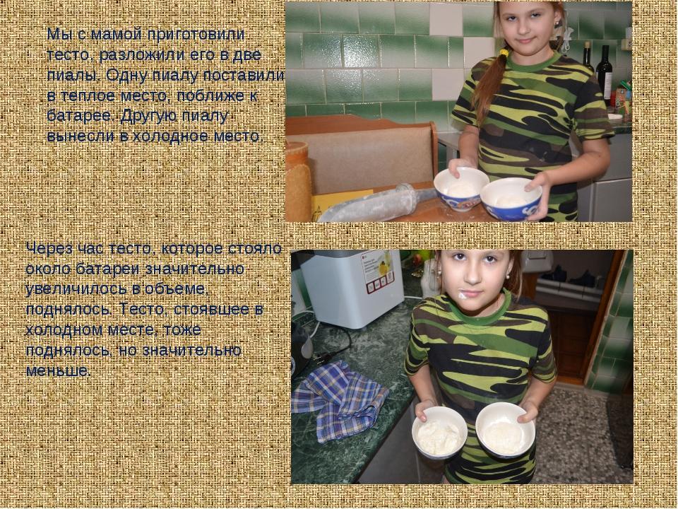 Мы с мамой приготовили тесто, разложили его в две пиалы. Одну пиалу поставили...