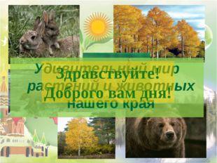 Удивительный мир растений и животных нашего края Здравствуйте! Доброго вам дня!