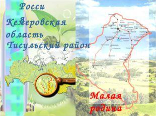 Россия Кемеровская область Тисульский район Малая родина