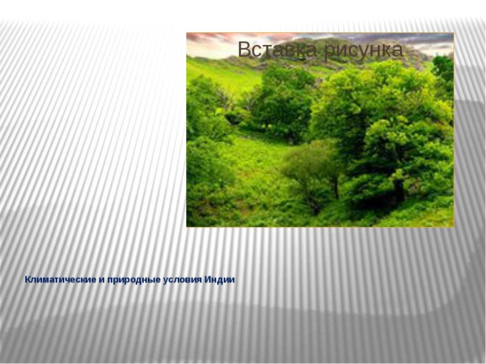 Климатические и природные условия Индии