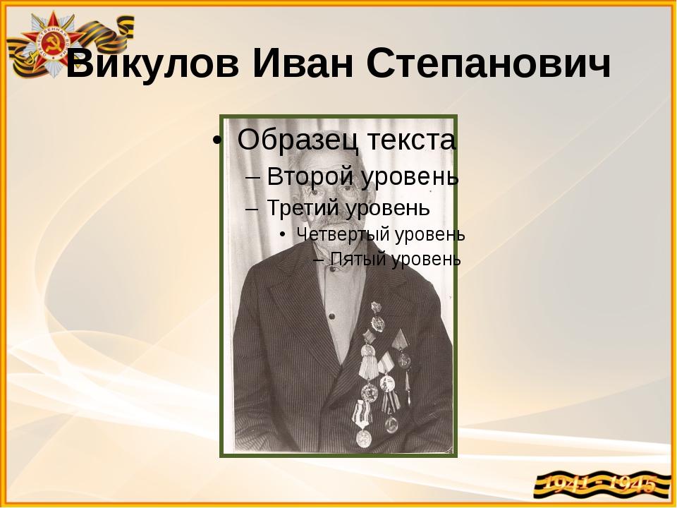 Викулов Иван Степанович