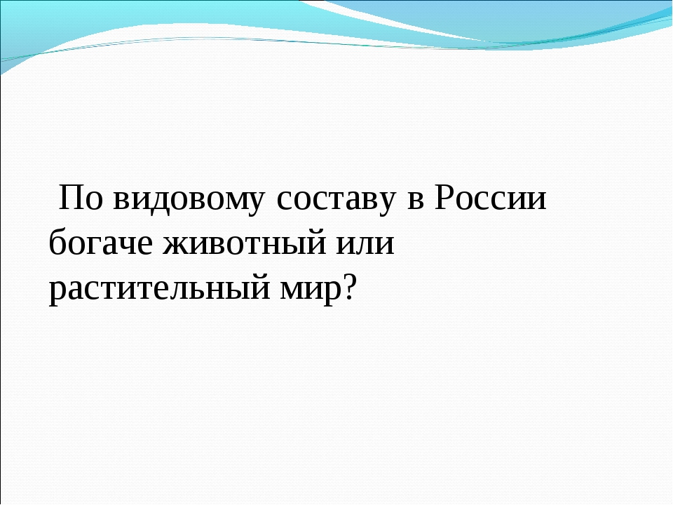 По видовому составу в России богаче животный или растительный мир?
