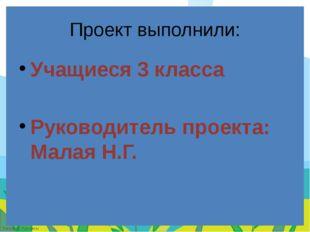 Проект выполнили: Учащиеся 3 класса Руководитель проекта: Малая Н.Г. FokinaLi