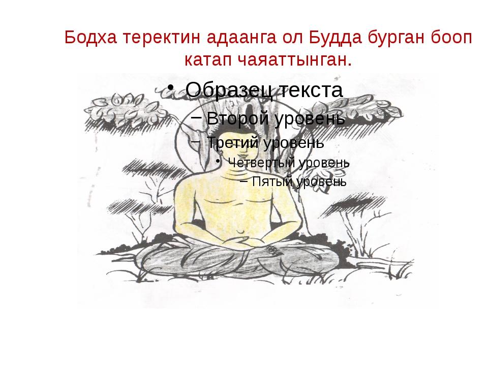 Бодха теректин адаанга ол Будда бурган бооп катап чаяаттынган.