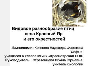 Видовое разнообразие птиц села Красный Яр и его окрестностей Выполнили: Конн