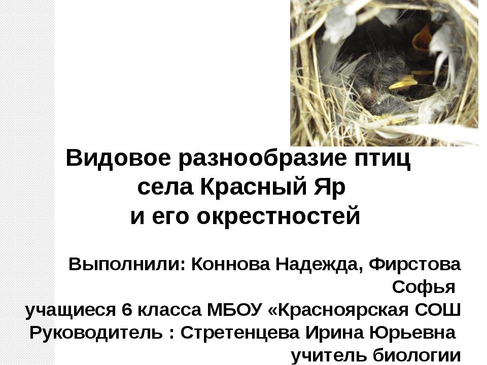 Видовое разнообразие птиц села Красный Яр и его окрестностей Выполнили: Конн...