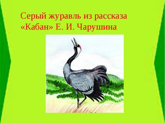 Серый журавль из рассказа «Кабан» Е. И. Чарушина