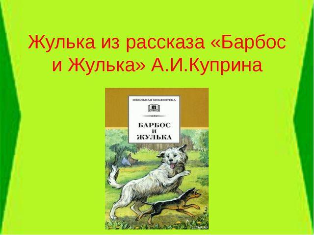 Жулька из рассказа «Барбос и Жулька» А.И.Куприна