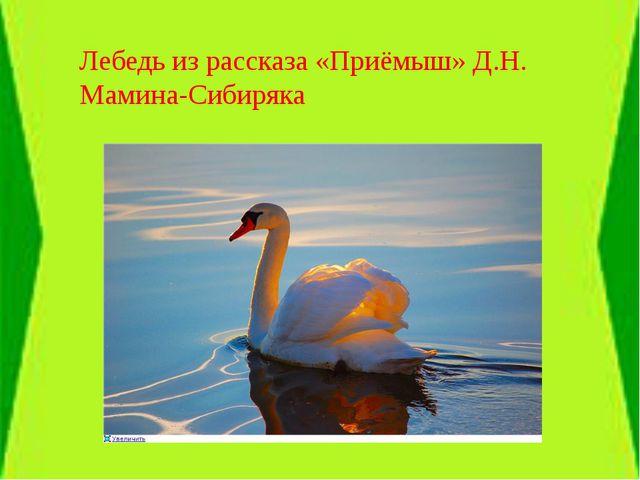 Лебедь из рассказа «Приёмыш» Д.Н. Мамина-Сибиряка
