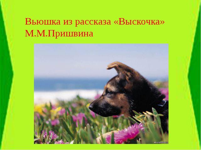 Вьюшка из рассказа «Выскочка» М.М.Пришвина