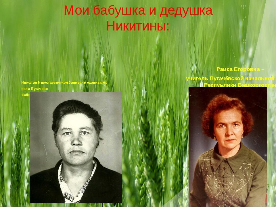 Мои бабушка и дедушка Никитины: Николай Николаевич-комбайнёр- механизатор сел...