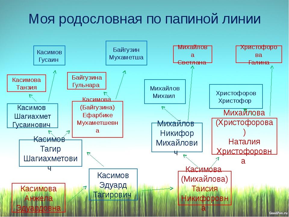 Моя родословная по папиной линии Касимов Эдуард Тагирович Михайлов Никифор Ми...