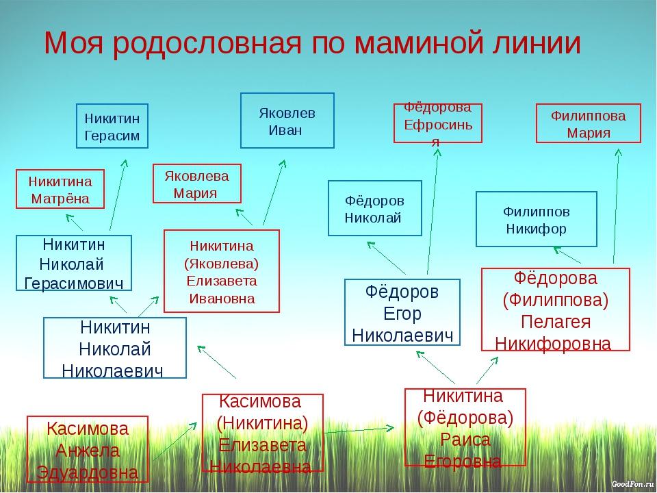Моя родословная по маминой линии Фёдоров Егор Николаевич Никитин Николай Гера...