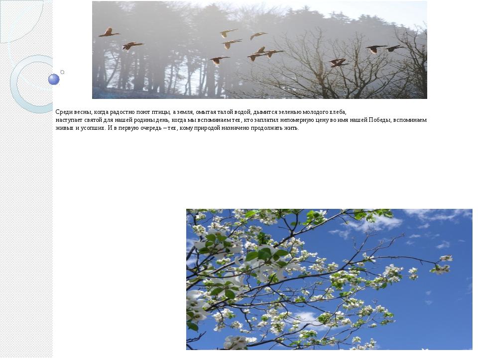 Среди весны, когда радостно поют птицы, а земля, омытая талой водой, дымится...