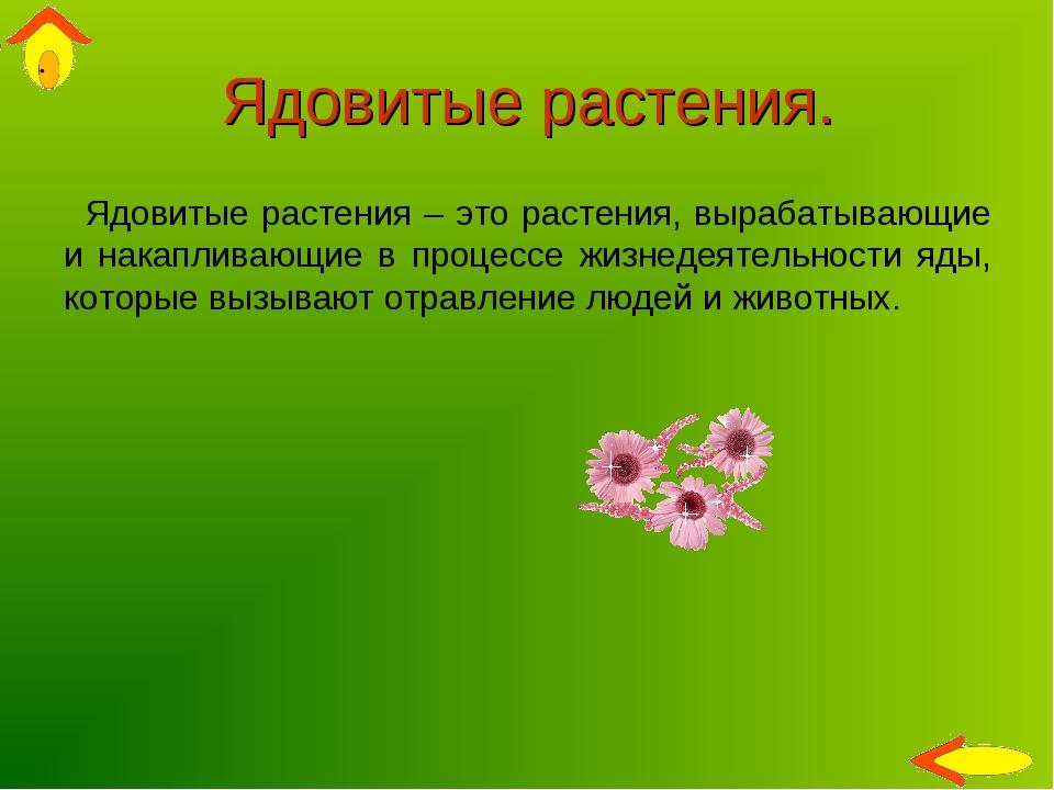 Ядовитые растения. Ядовитые растения – это растения, вырабатывающие и накапли...