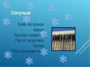 Сосулька Зима на крыши серые Бросает семена - Растит морковки белые Под крыша