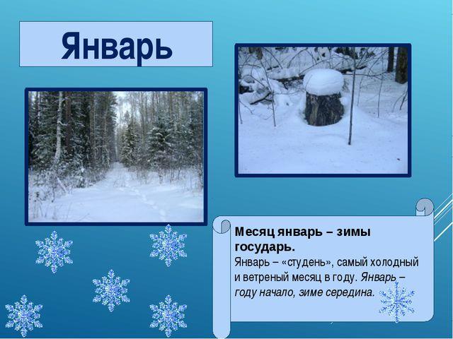 Январь Месяц январь – зимы государь. Январь – «студень», самый холодный и вет...