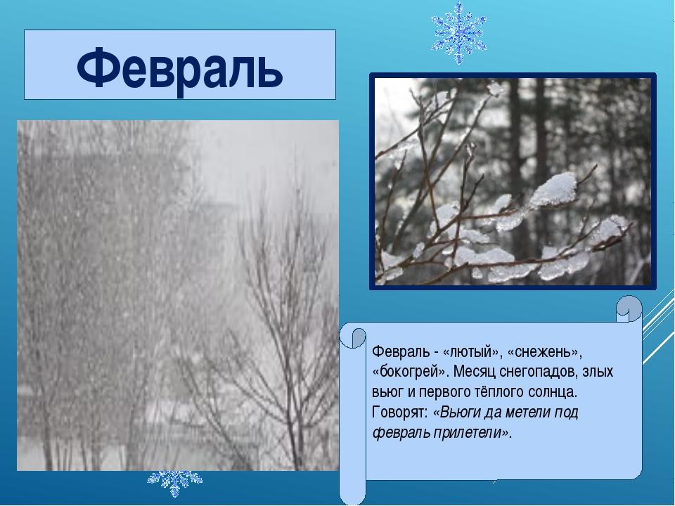 Февраль - «лютый», «снежень», «бокогрей». Месяц снегопадов, злых вьюг и перво...