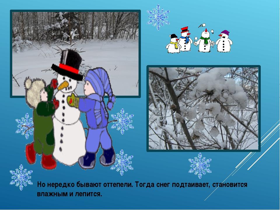 Но нередко бывают оттепели. Тогда снег подтаивает, становится влажным и лепит...