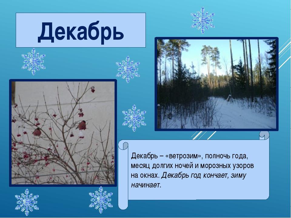 Декабрь Декабрь – «ветрозим», полночь года, месяц долгих ночей и морозных уз...
