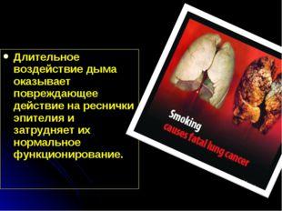 Длительное воздействие дыма оказывает повреждающее действие на реснички эпите
