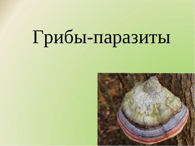 Грибы-паразиты
