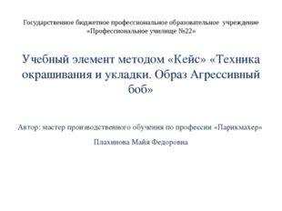 Государственное бюджетное профессиональное образовательное учреждение «Профес