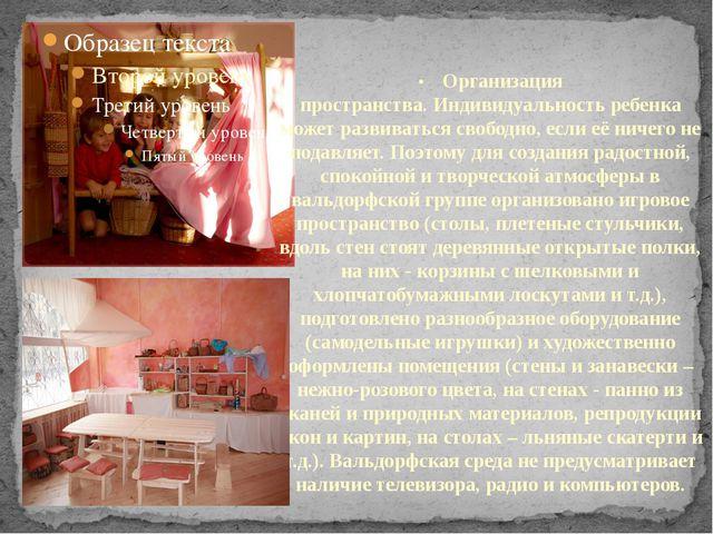 •Организация пространства.Индивидуальность ребенка может развиваться сво...