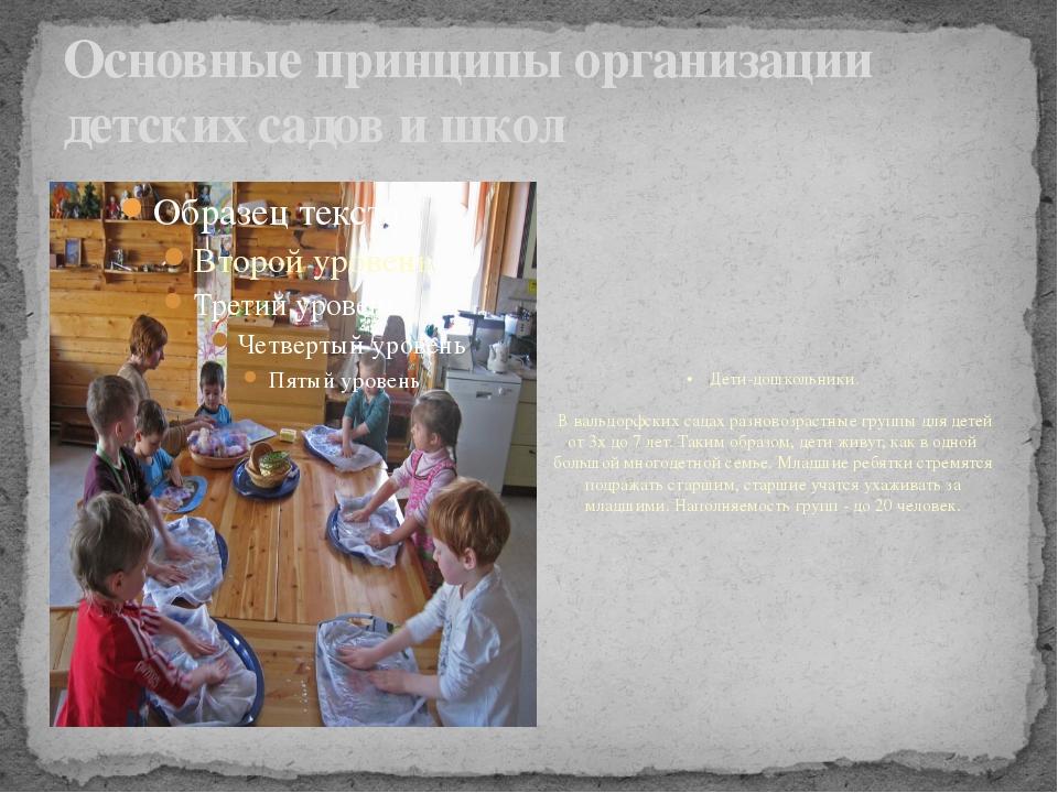 Основные принципы организации детских садов и школ •Дети-дошкольники. В...