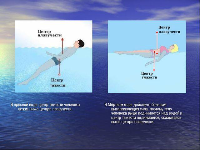 В пресной воде центр тяжести человека лежит ниже центра плавучести. В Мёртвом...